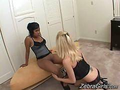 zebra girls-Desiree Moore , Olivia Winters