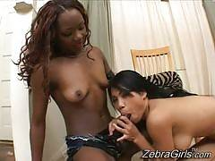 Persia & Lucy Thai. Zebra Girls