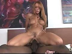 Blacks On Cougars - Janet Mason